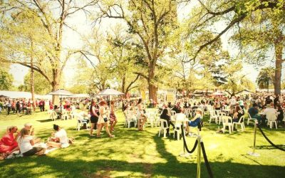 Olympus Cheese on Tour for Adelaide's Cheesefest + Ferment Festival