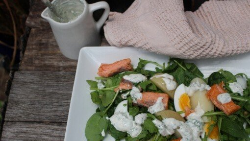 greek yoghurt dressing on salmon salad